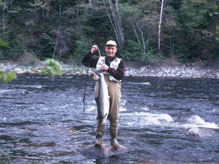CAN MAINE SALMON RETURN FOR GOOD?