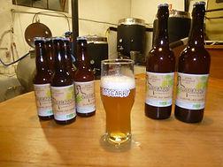 Bière_artisanale_BIO.jpg
