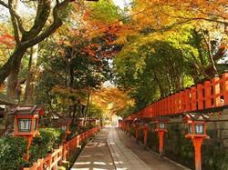 円山公園  徒歩10分