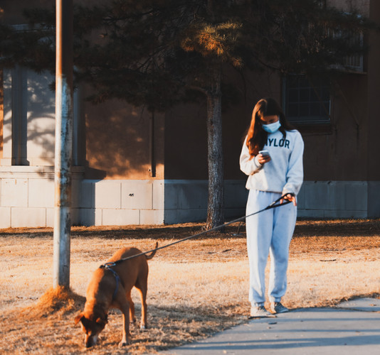 Woman Walking dog in Albuquerque.JPG