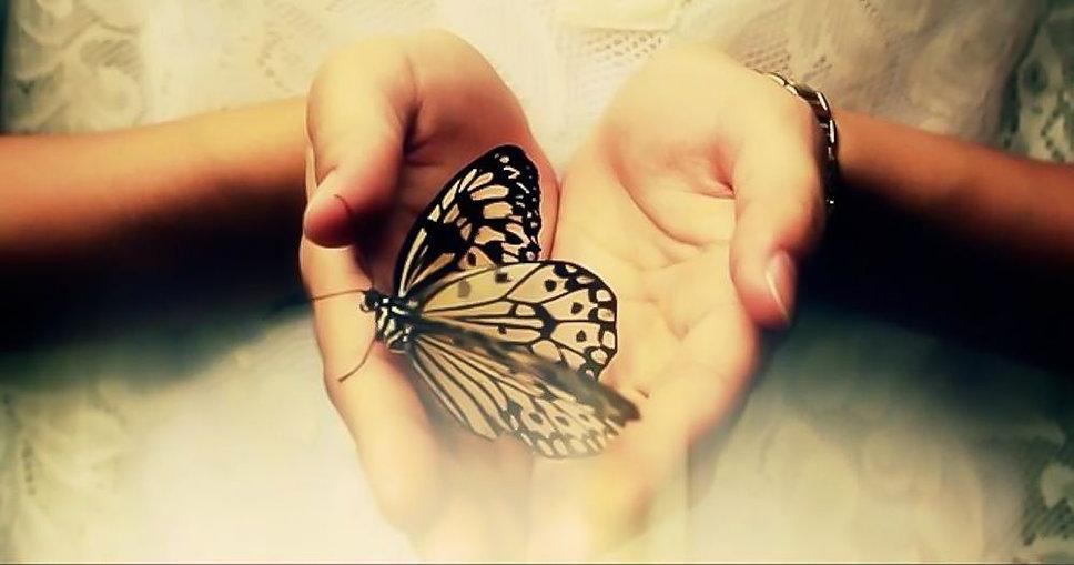 butterfly in hand LOGGA.jpg