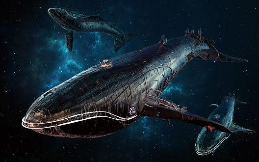 space whales.jpg