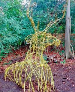 Living Willow Deer
