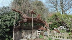 Alice Park Community Garden