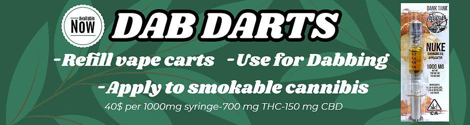 new dab dart.jpg