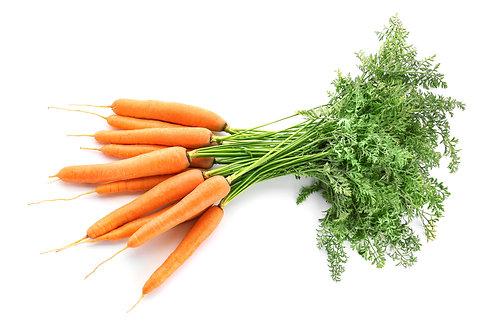 Bio Karotten, Bund