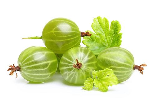 Bio Stachelbeeren grün ca. 250g