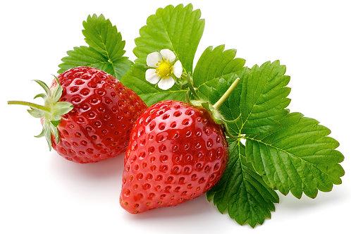 Bio Erdbeeren ca. 500g