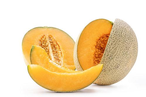 Bio Melone Galia Stk.