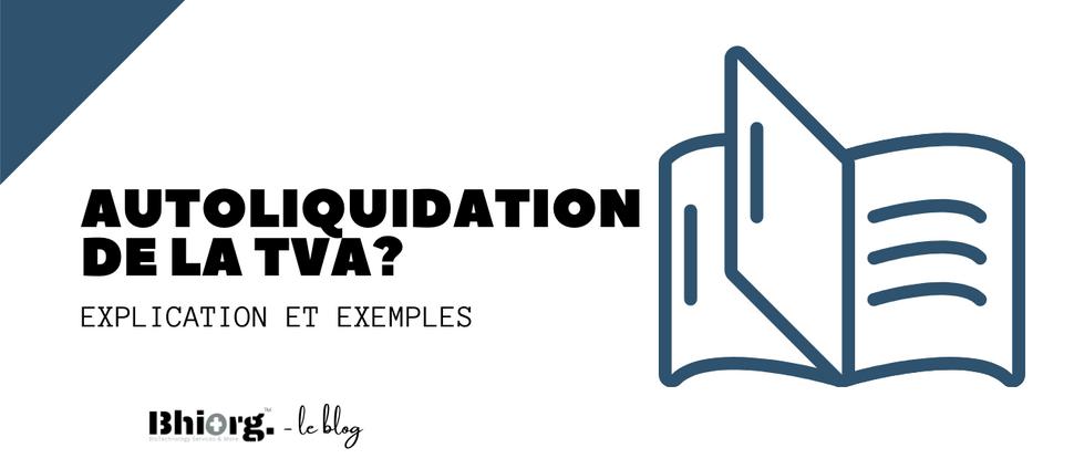 Qu'est-ce que l'autoliquidation de la TVA?