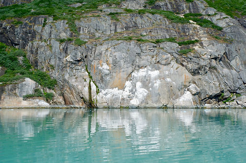 birds in eternity fjord