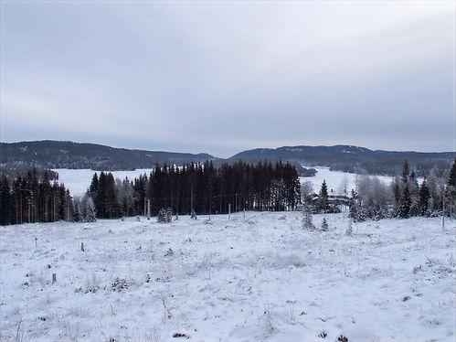 view from keikut
