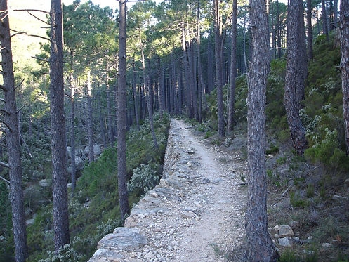 gr20 hiking route
