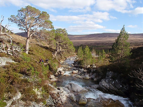rivers in the cairngorms
