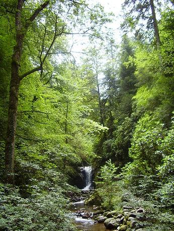 39_watervallen3.jpg