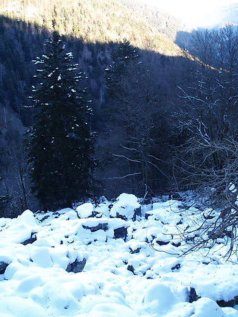 waking in the vosges