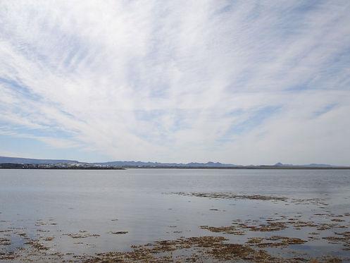 shore of reykjavik