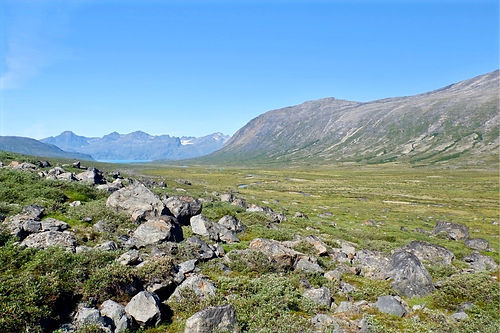 green valley in greenland