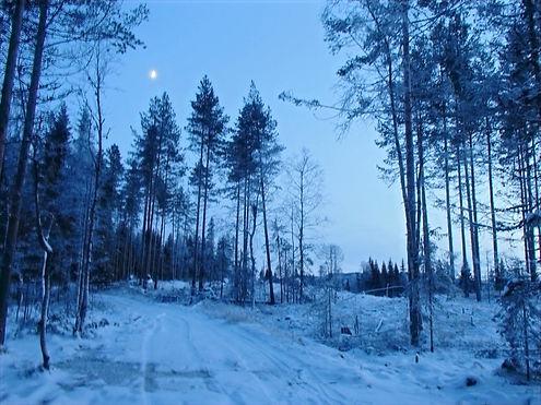 hiking in oslo in winter