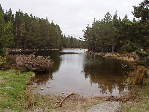 a lake in aviemore