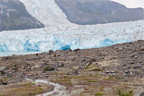 camping among glaciers in greenland