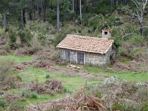 cabin in corsica