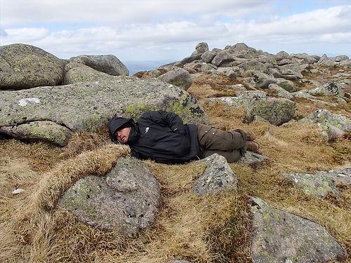 sleeping on moss