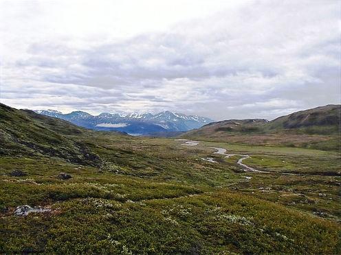 hiking in greenland