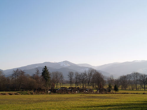 hiking in schwarzwald