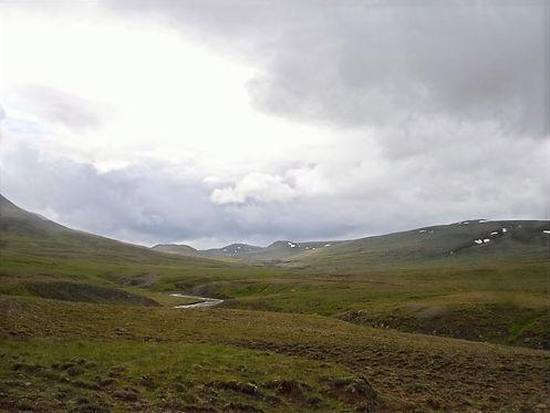 icelandic meadows