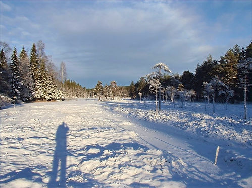 winter landscape in norway
