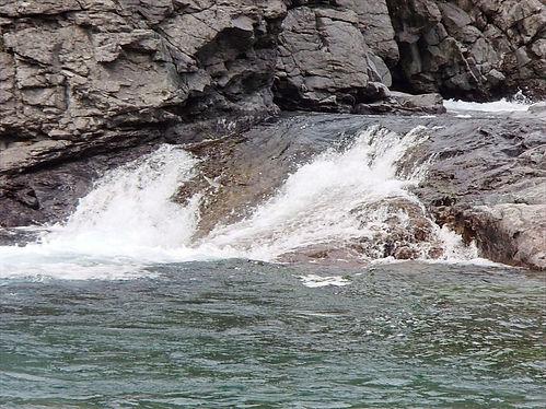 Fishing jumping up a waterfall