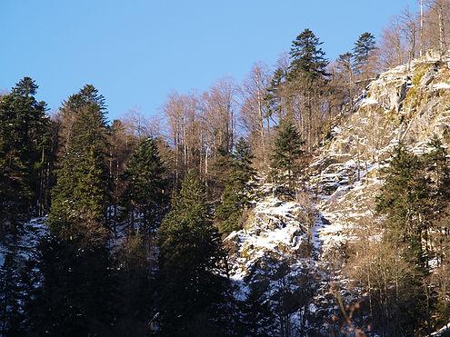 lac du fischboedle in winter