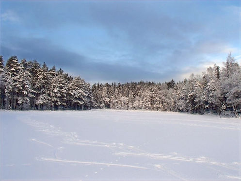 norwegian snow landscape