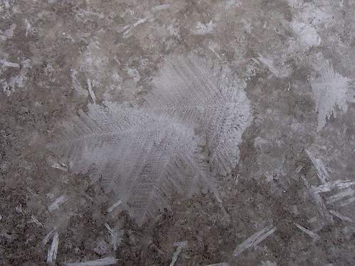 ice feather
