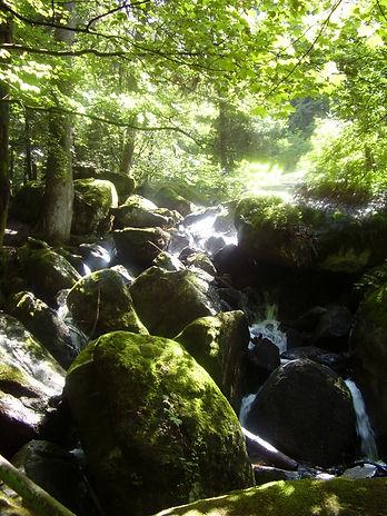 41_dag10_watervallen_hof-2.jpg