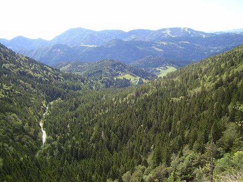 Slvenian hills