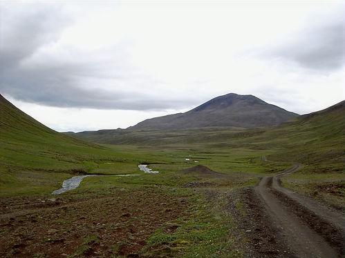 green icelandic landscape