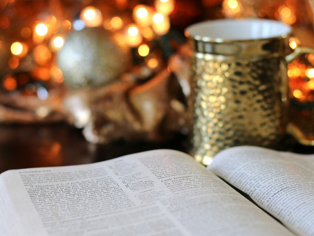 What's the Bible All About? YA Author Sara Ella's Answer