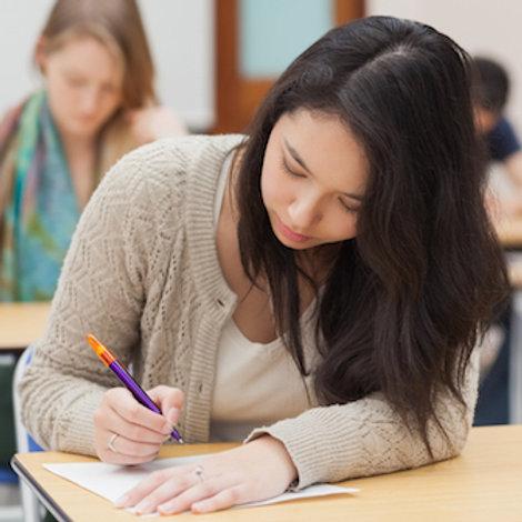 Premium tutor 1 lesson