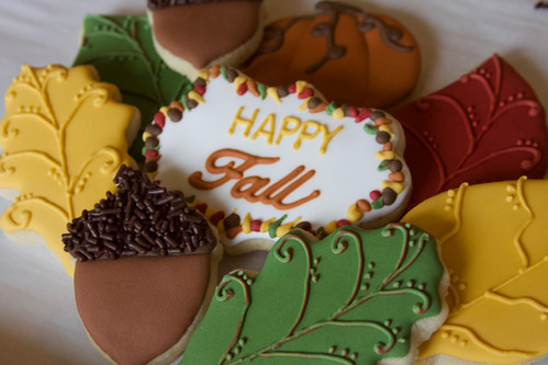 Happy Fall themed sugar cookies