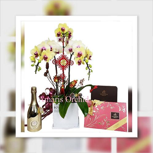 農曆新年禮物籃 C: 3株蝴蝶蘭 + Godiva 禮盒 x 2 + 氣泡酒 HAMPER C: Orchid x 3 + Prosecco + Godiva