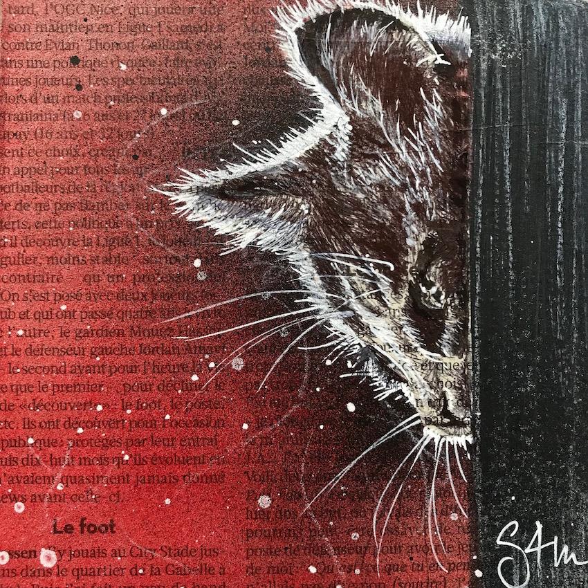F1_Minicat(v)