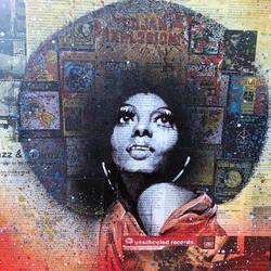 Diana Ross (vendu)