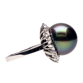 perla (1).png