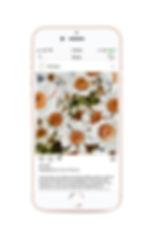 SocialMockups-honey-1.jpg