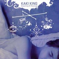 """Air & Kilometers"" guest collaboration w/ guitarrist Kaki King"