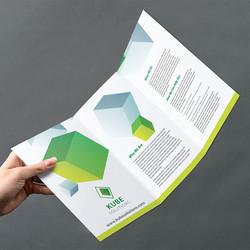 tri fold leaflets somerset