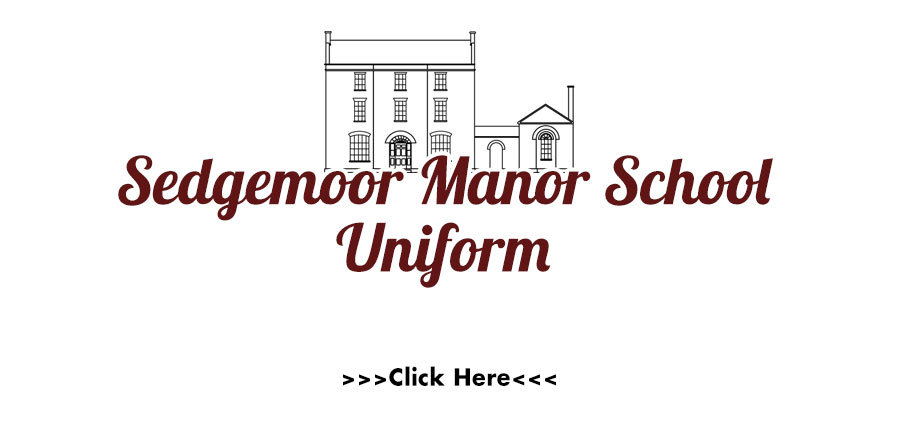 sedgemoor-manor-school-web-preview.jpg
