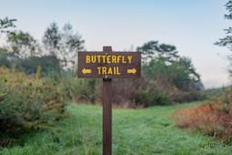 Butterfly Trail